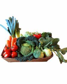 Obst und Gemüse Abonnement